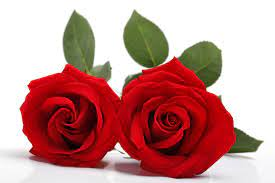 valentijndag-cadeau-voor-hem-haar